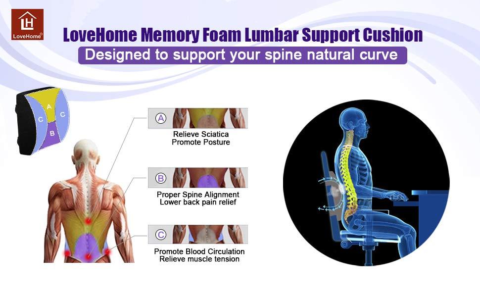 LoveHome Memory Foam Lumbar Support